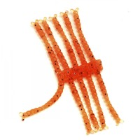 """AB BloodWorm 1"""" (30 шт.) CARROT"""
