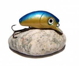 BUG MINNOW 33 SRg GoldBlue